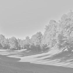 golf-club-la-pinetina_051792_full-250x250