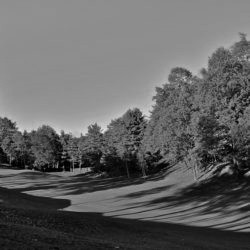 golf-club-la-pinetina_051792_full-250x250